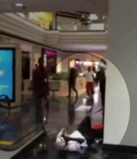 Stedmon Fentress maced and striked by Oak Mall off-duty police officer