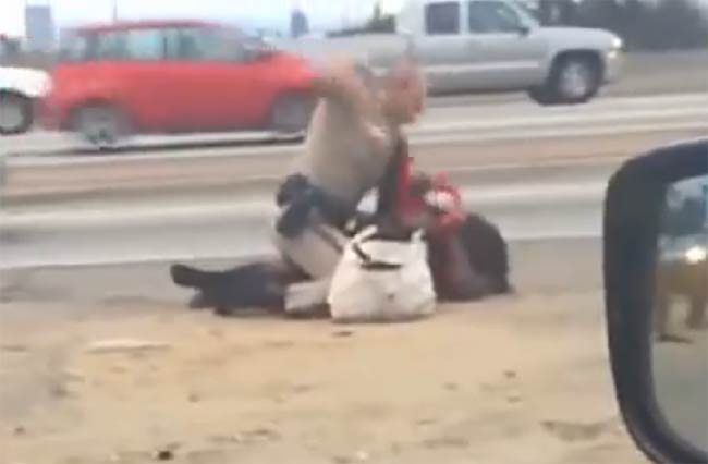 police attacks woman on Los Angeles highway
