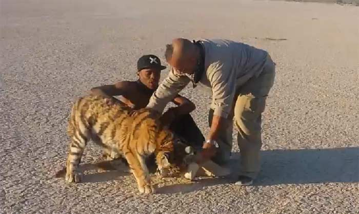Lil Buck with Tiger on music video shoot